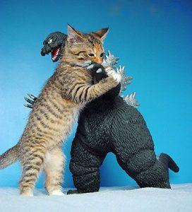 Kitten Godzilla